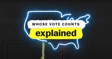 Whose Vote Counts, Explained review -
