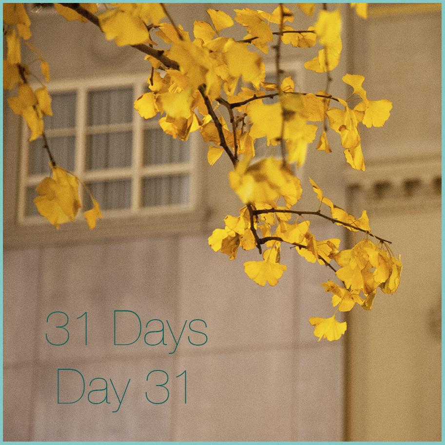 31 days Day 31