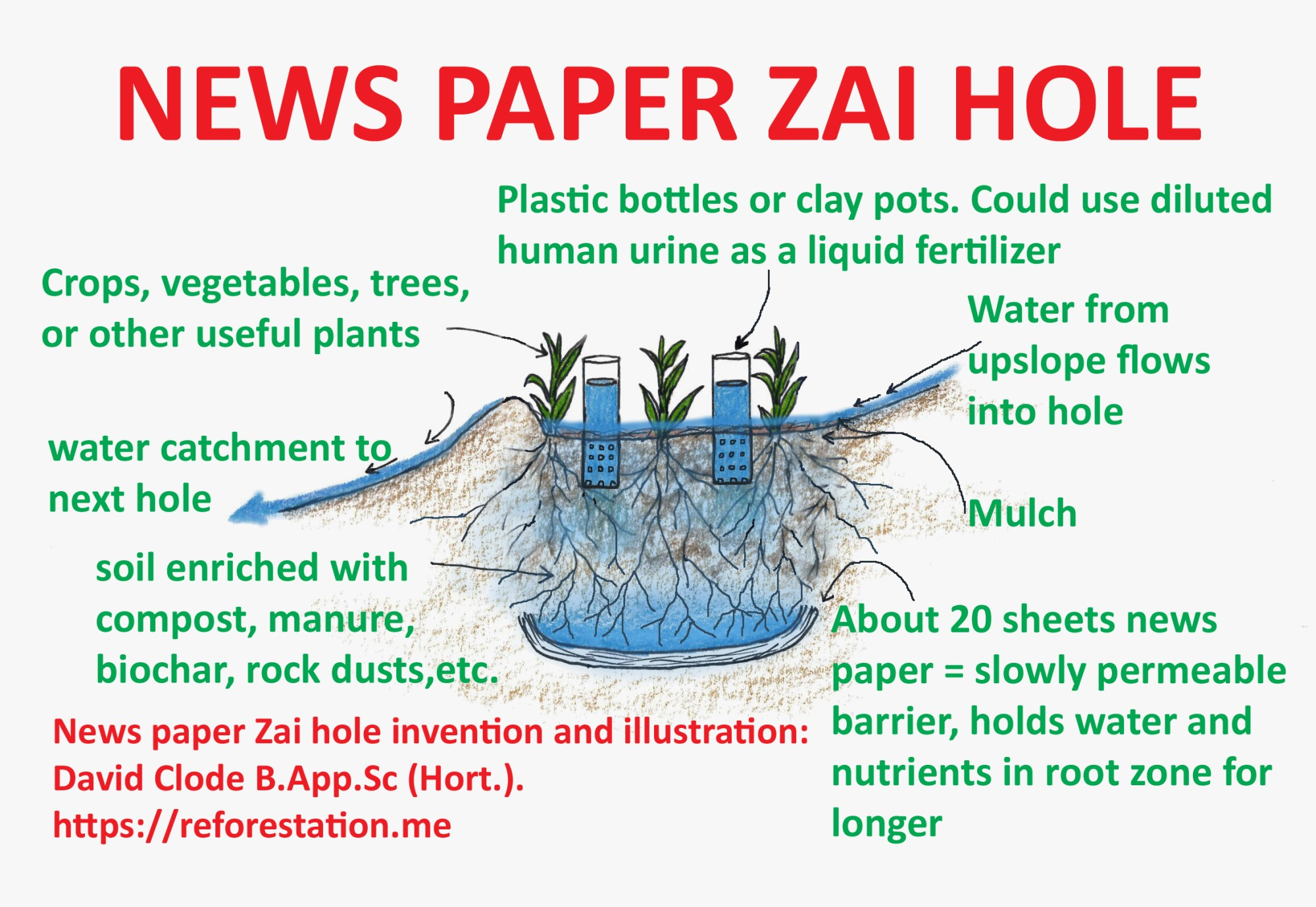 hight resolution of news paper zai hole about 20 sheets of news paper at the base of the hole form a slowly permeable barrier this theoretically holds water and nutrients in