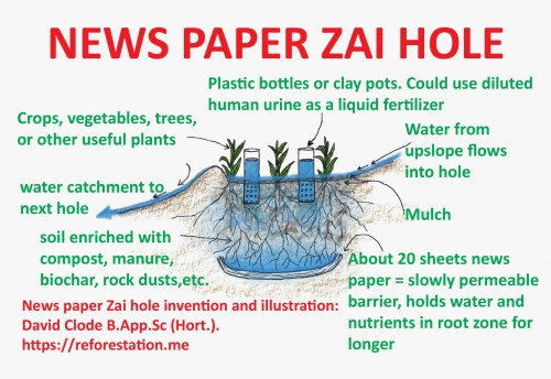 small resolution of news paper zai hole about 20 sheets of news paper at the base of the hole form a slowly permeable barrier this theoretically holds water and nutrients in