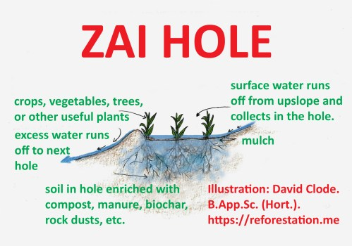 small resolution of zai hole invented in africa the space up slope from the hole acts as a catchment for water which then flows into the hole only really needed in dry