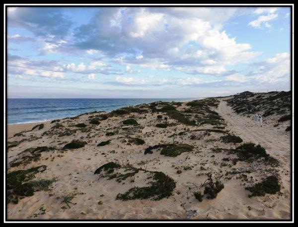 Walking Home from Pego Beach, Carvalhal, Comporta, Portugal.