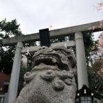 初詣におすすめの東京の穴場スポット3選