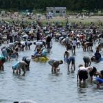千葉県で穴場な潮干狩りのスポットはココ!