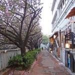 目黒川沿いでお花見をしながら楽しめるランチスポット