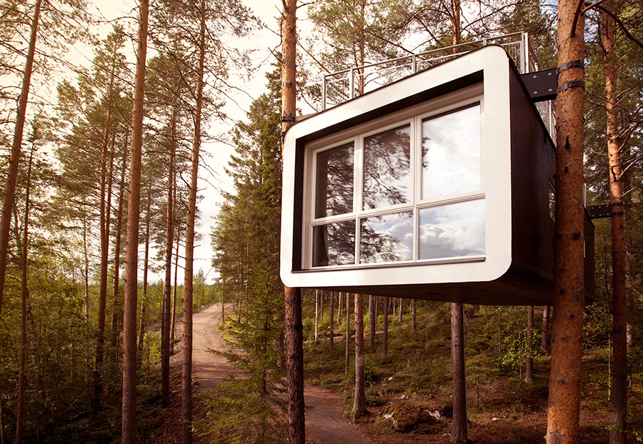 Branching Out: The World's Coolest Tree Houses