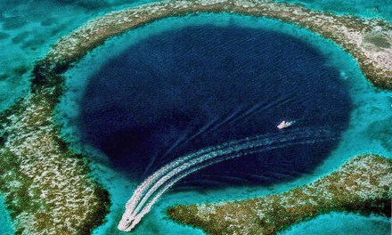 """Biggest Reef in Americas Says """"No!"""" to Offshore Oil"""