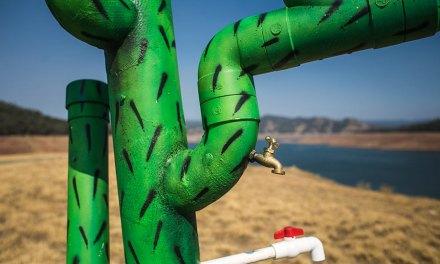 Art Tackles Drought