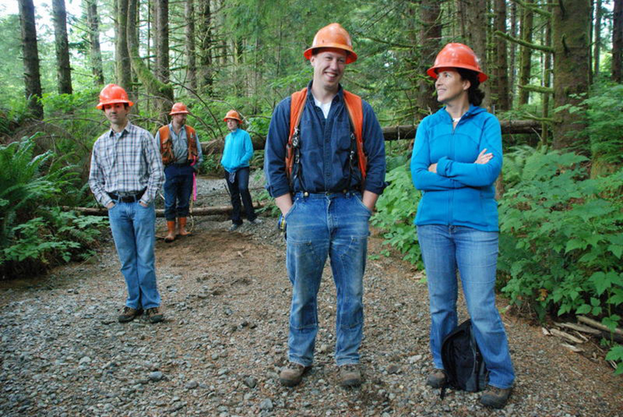 A Walk in The Woods: How Forests Grow Solid Returns