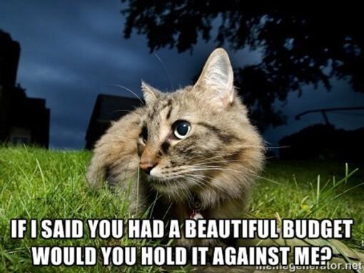 cat-meme-1-budget