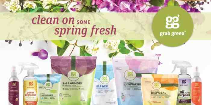 Easy Home Spring Cleaning with Grab Green