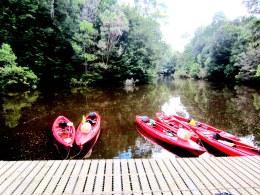 Kayaking sights