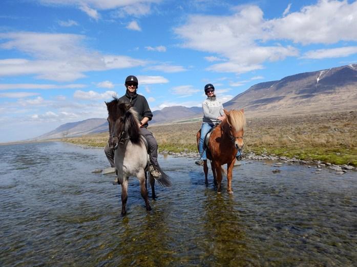 Koně na Islandu_Icelandic horses_Hestasport_Varmahlid