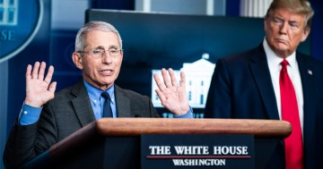 Fauci Contradicts Trump on Reopening Economy