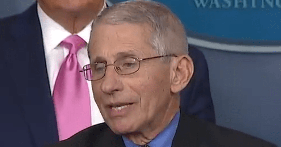 Fauci Acussed Of 'Misinformation Campaign' Against Hydroxychloroquine