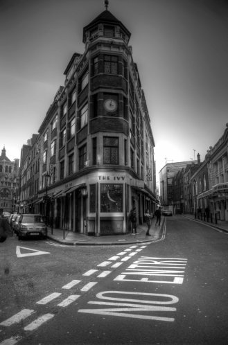 The Ivy B&W HDR