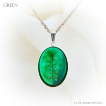 FP6-green