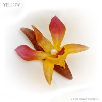 Yellow-Small