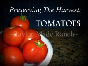 Preserving-Tomatoes-Taylor-Made-Ranch