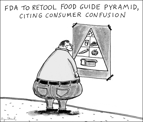 https://i0.wp.com/realfoodhouston.com/wp-files/wp-content/uploads/2012/11/Food-pyramid-cartoon.png