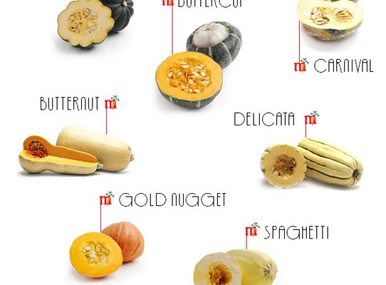 Winter Squash : Visual Guide + Recipes