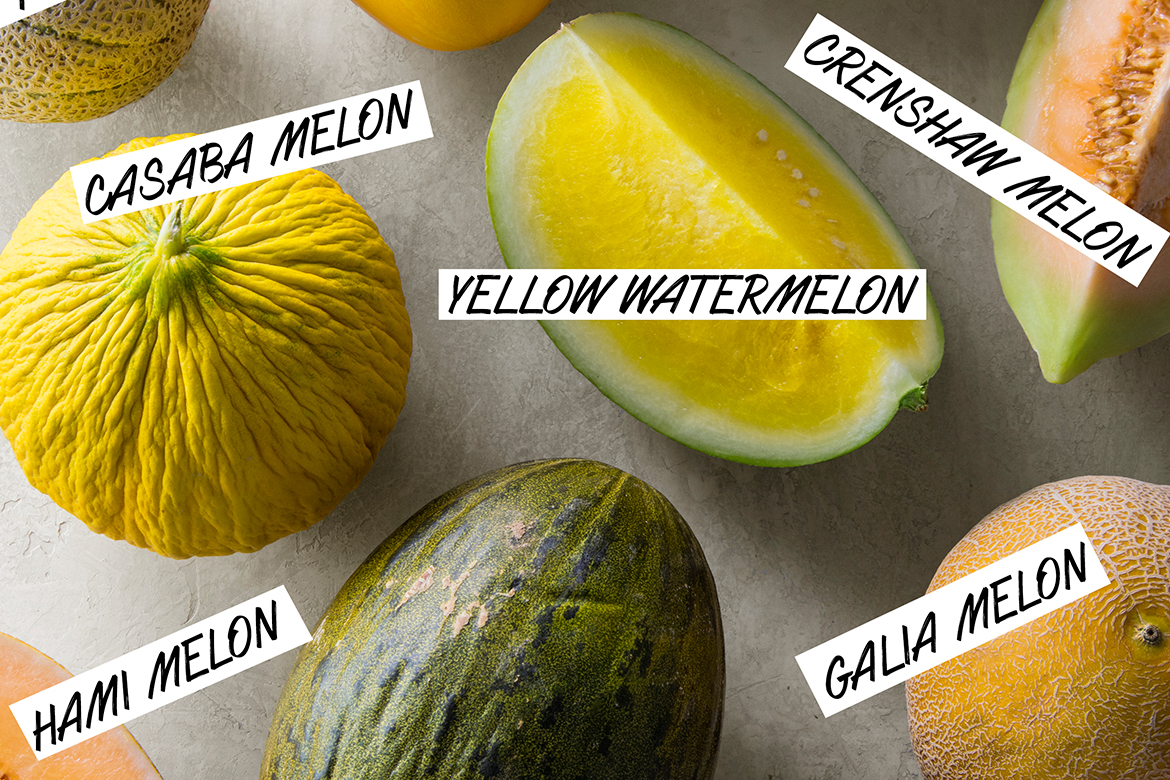 A Visual Guide to Melon