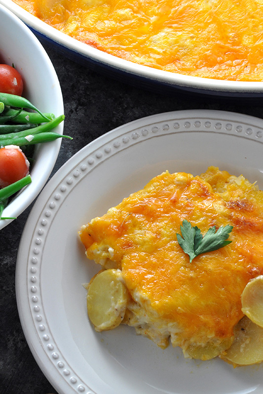 The Ultimate Potato Recipe Roundup l cheesy scalloped dutch yellow potatoes