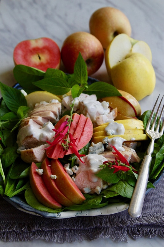 20+ Amazing Apple Recipes for Fall l easy roast chicken apple salad