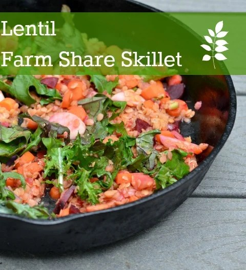 This lentil farm share skillet is a healthy vegetarian meal full of nutritious vegetables. Try this recipe when you have a fridge full of random veggies.