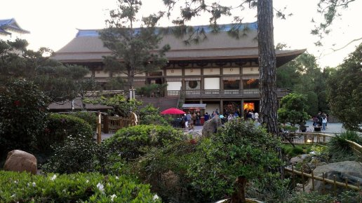 Watch your meal being cooked right at your table at Teppan Edo in Epcot.