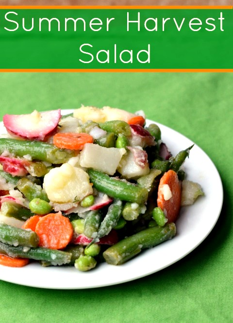 This Summer Harvest Salad is a healthy, delicious side dish that highlights fresh summer vegetables. It's a great addition to a light meal.