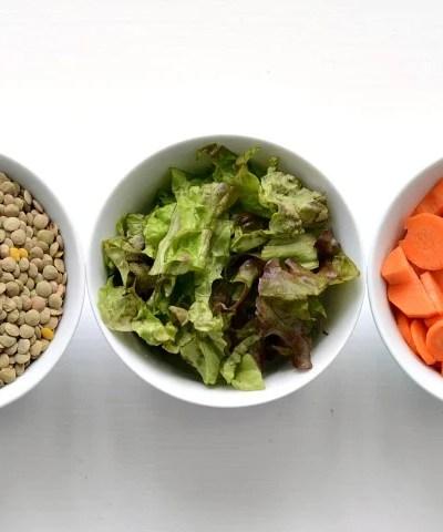 Frugal Vegan Dinner Recipes