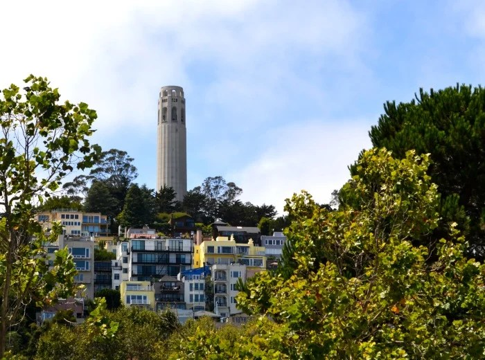 Take the elevator to the top of Coit Tower for amazing views of San Francisco.