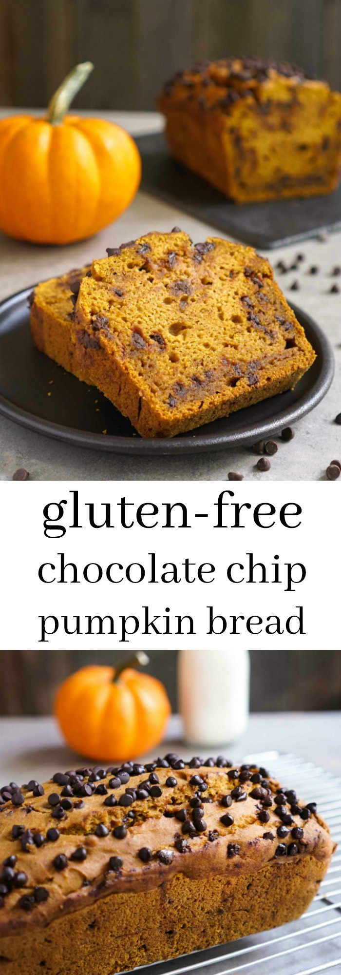 Gluten Free Chocolate Chip Pumpkin Bread - Real Food Real Deals