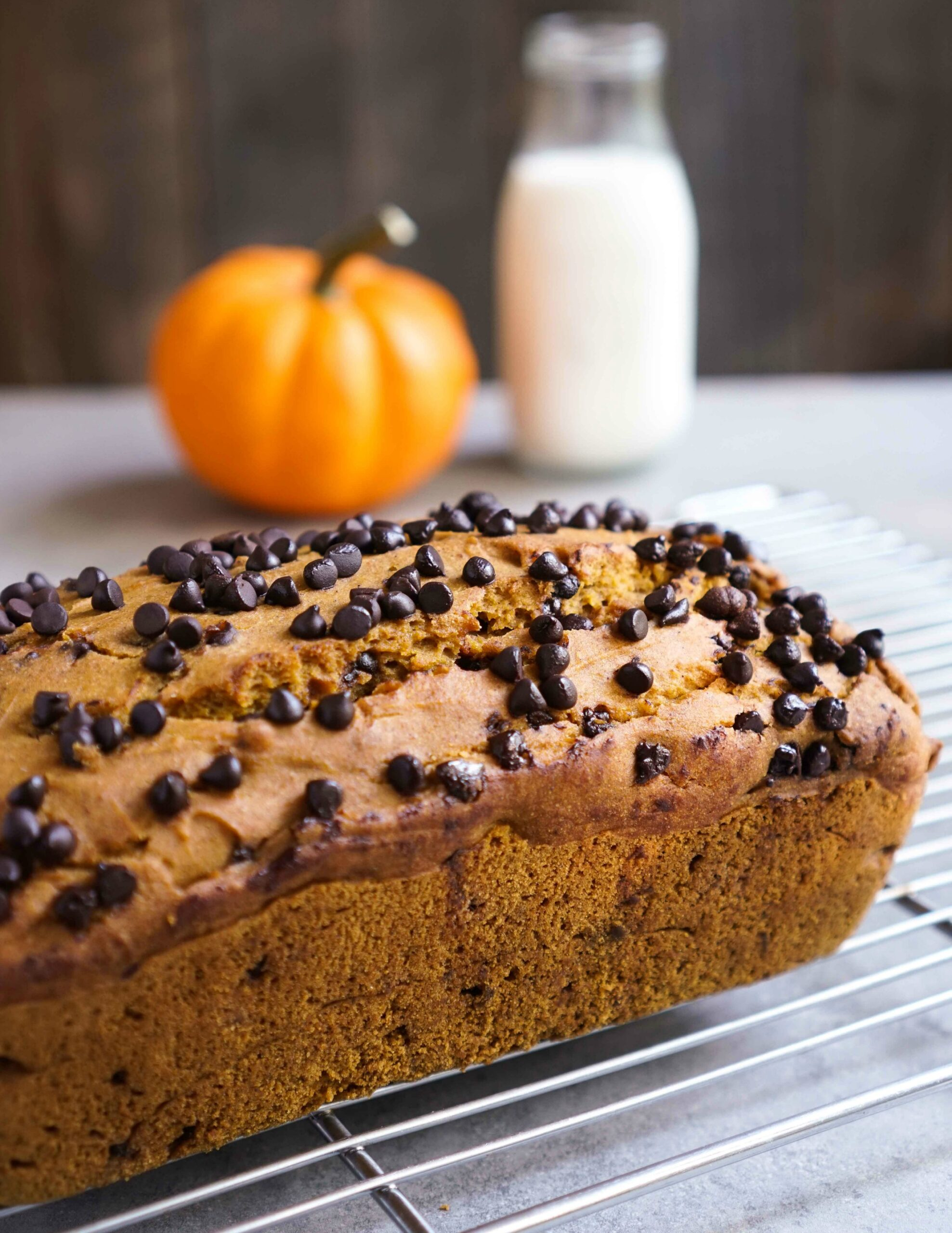 It doesn't get much better than this gluten-free chocolate chip pumpkin bread!