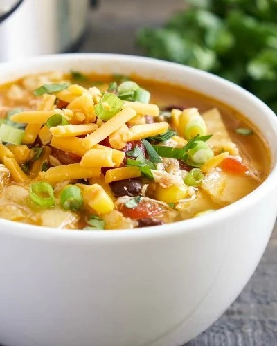 This Instant Pot chicken tortilla soup is so healthy and delicious!