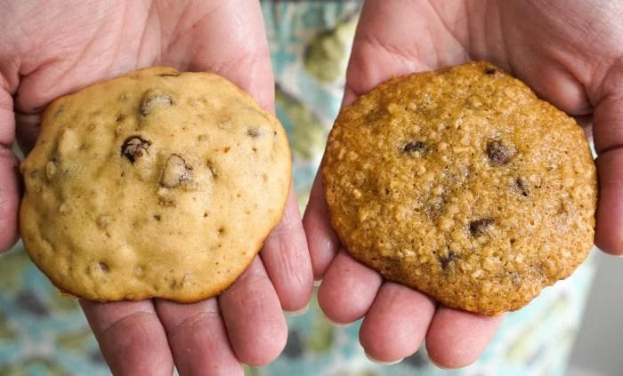 Steel cut oats cookies, with and without cooked oats