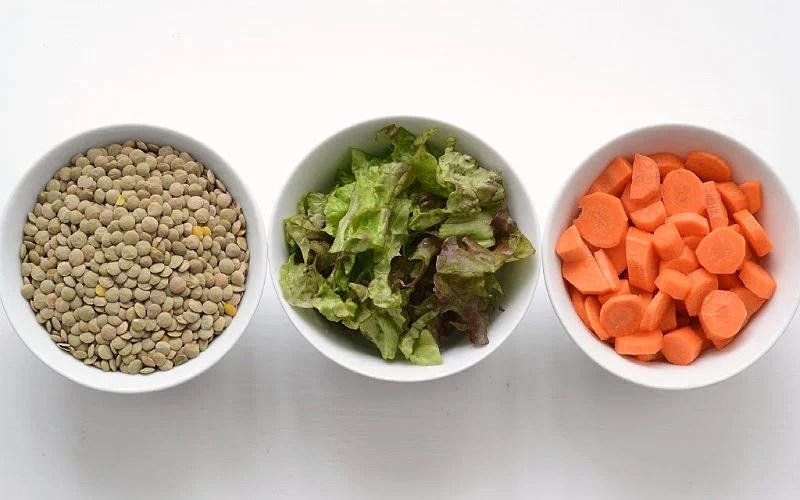 Lentils, lettuce, and carrots in bowls