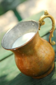 kefir-in-copper-pitcher-199x300 3 Top Foods to Beat The Stomach Virus Blues