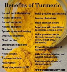 benefits-of-tumeric-281x300 This Medicinal Herb May be the Best Nutritional Supplement to Date!