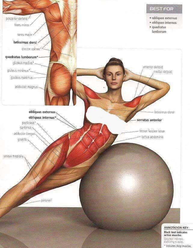 oblique-exercises My Favorite Ab Exercises to Get Nice Tone and Definition (with pics)!