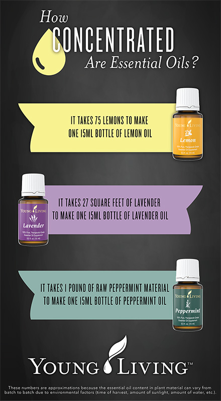 yl-infographic-sm Why every Home, Workplace, and GYM should have a diffuser going!