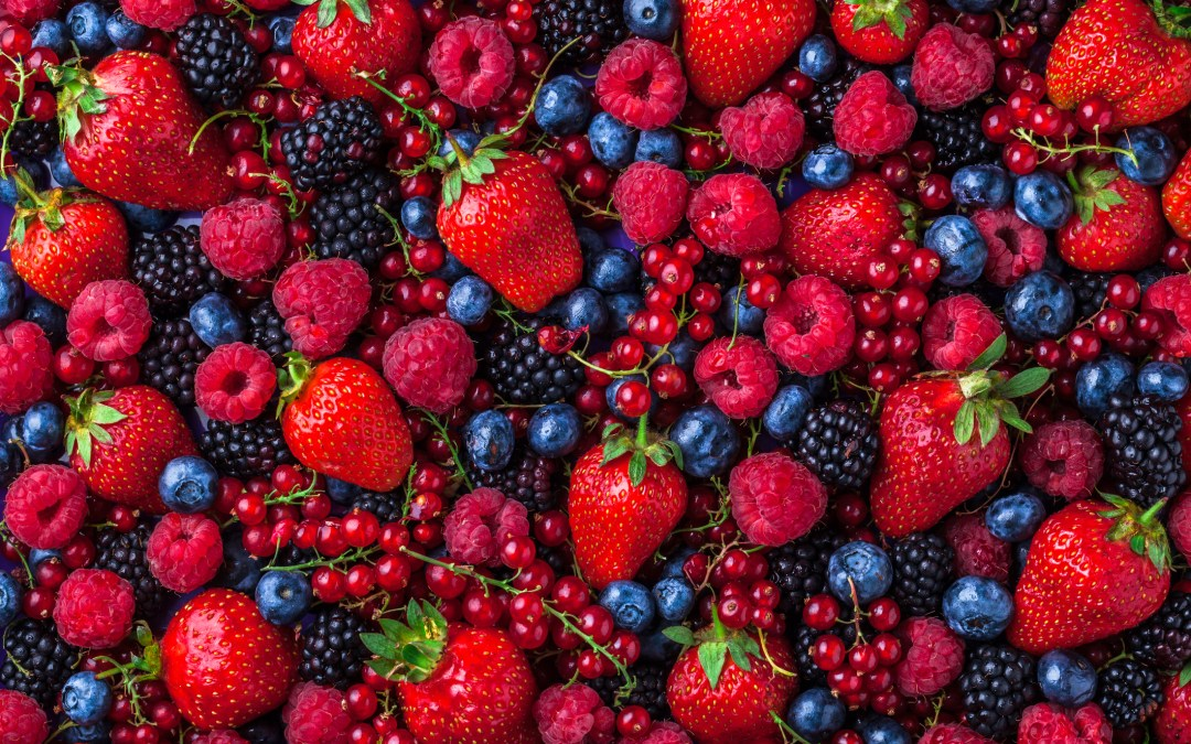 The Power of Berries!