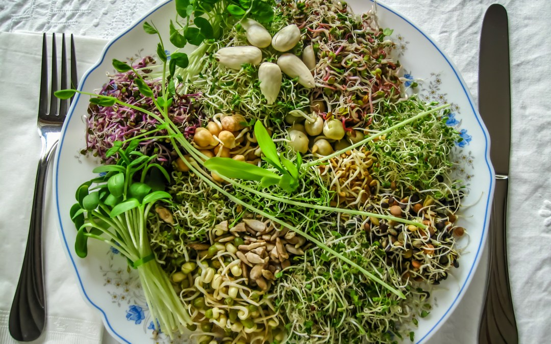Bump up the Protein on your Salad with this little known SUPERFOOD!