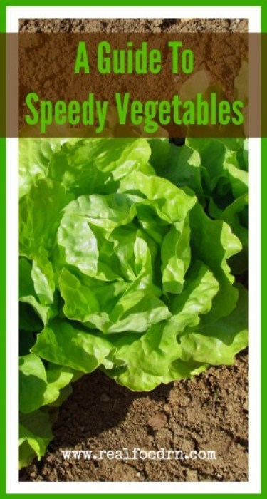 On Your Mark, Get Set, Grow: A Guide To Speedy Vegetables   Real Food RN