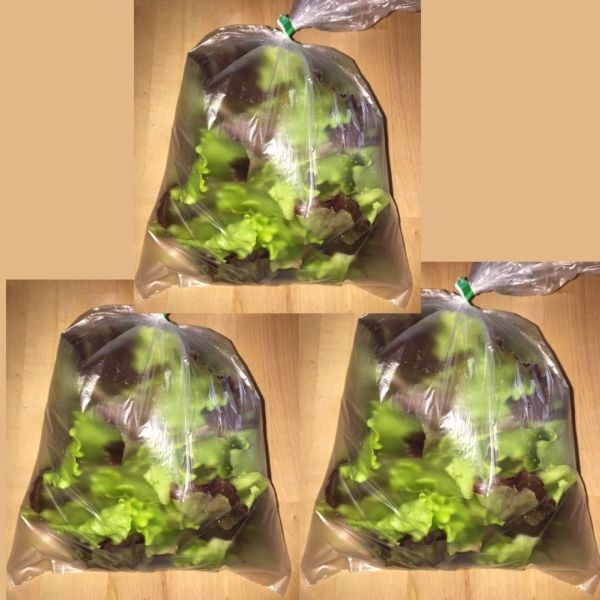 Lettuce Mix Special Price - Real Foods Farm