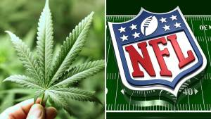 nfl and weed