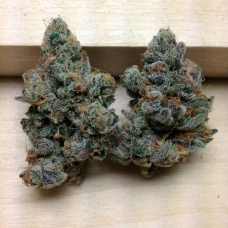Do-Si-Dos strain review