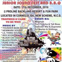 TRINITY SOUND PRESENTS JUNIOR SOUND FEST AND B.B.Q PROMO MIX