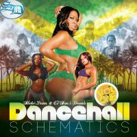 SELECTOR DOOM PRESENTS DANCEHALL SCHEMATICS VOL ONE